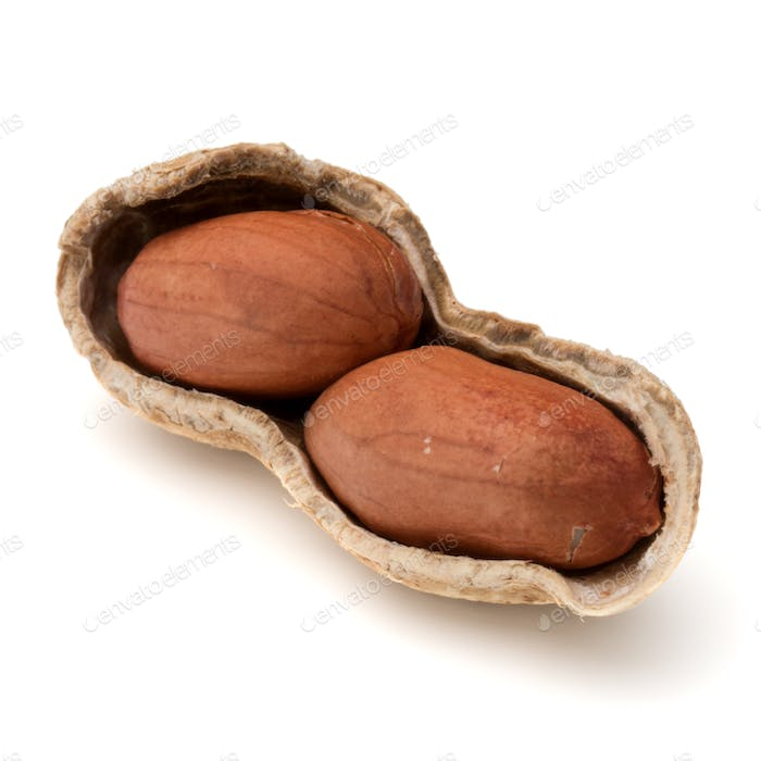 Opened peanut or groundnut pod isolated on white background close up