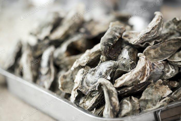 Nahaufnahme von frischen Austern in großen Teller zum Verkauf im Freien