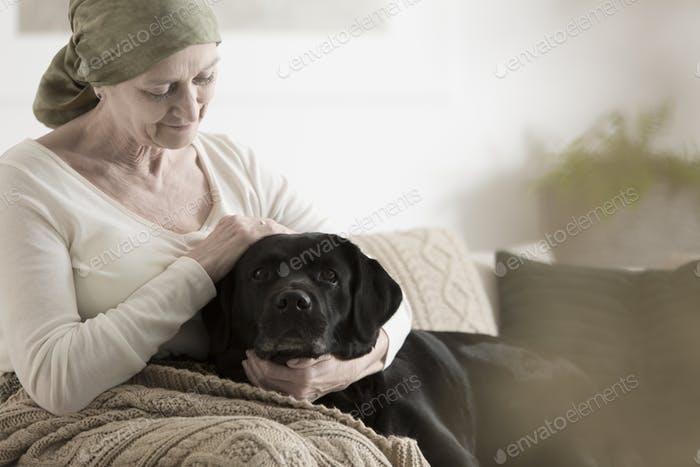 Grandmother with headscarf stroking dog