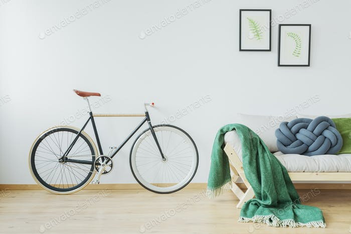 Thumbnail for Bike in stylish apartment