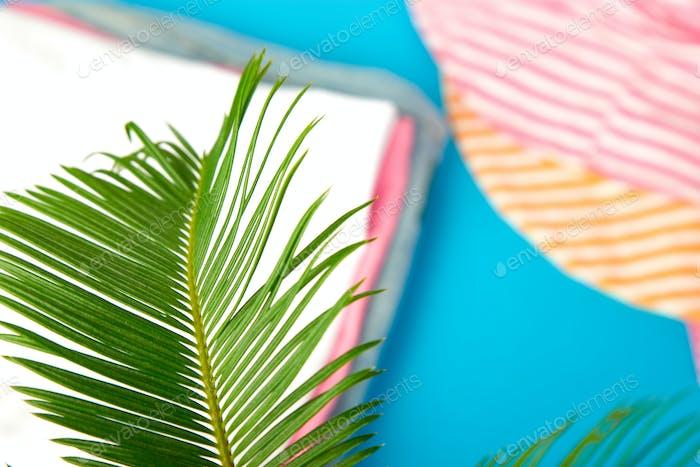 Sommer-Outfit verschwommen. tropische Palme verlassen
