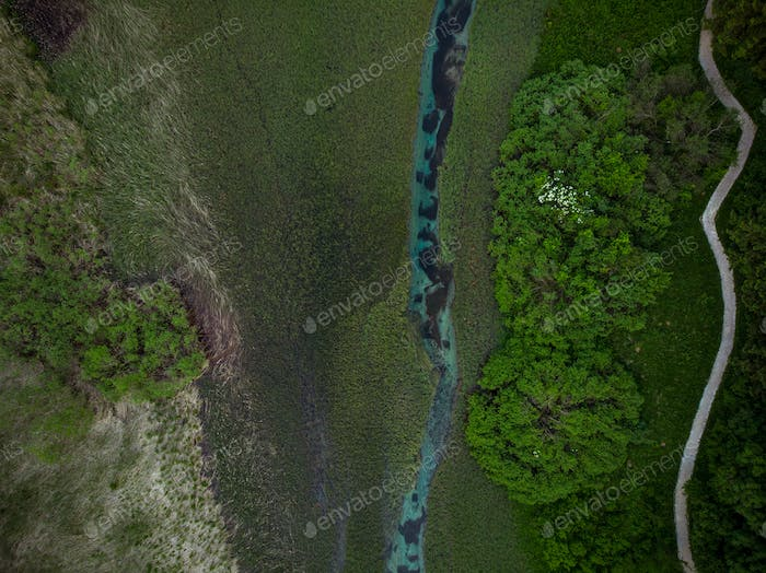 Natural pattern in Zelenci,Slovenia.Aerial drone view
