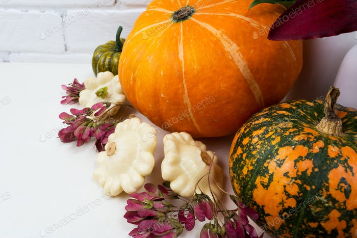 Thanksgiving arrangement with pumpkins and pink seeds
