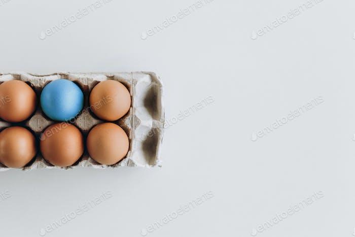 gekochte farbige Eier braun ein blaues Tablett