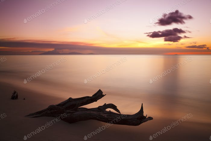 Driftwood And Montserrat Volcano At Sunset