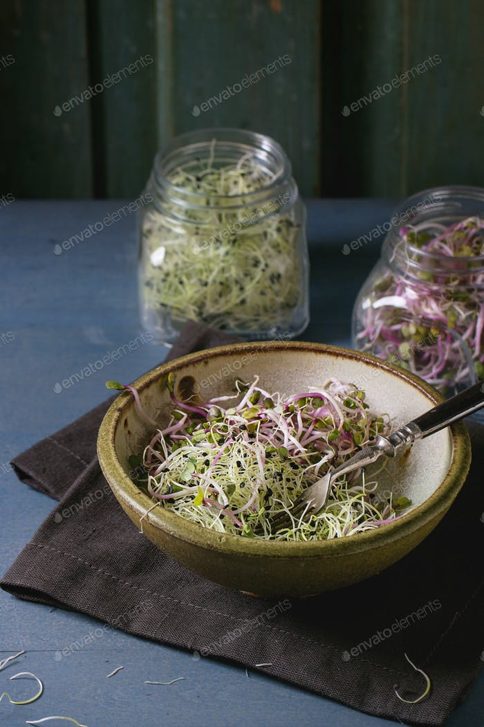 Fresh  Sprouts salad