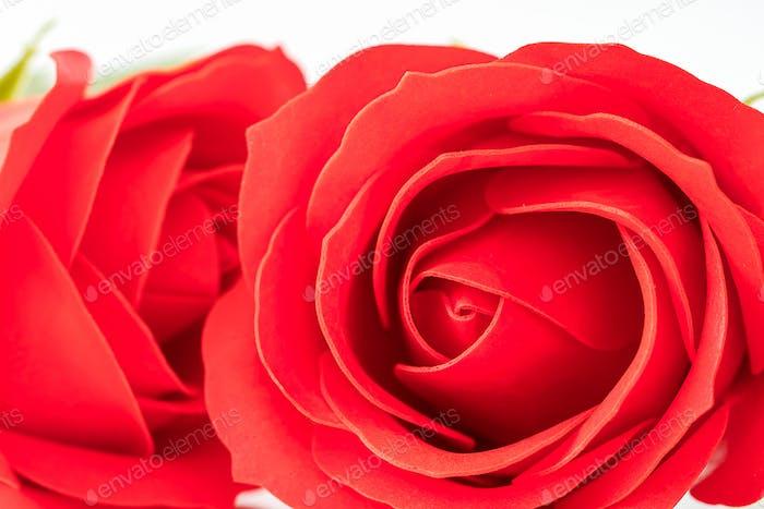 Red plastic fake roses on white_ (2)