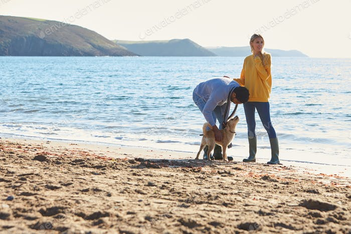 Couple Walking With Dog Along Shoreline On Winter Beach Vacation