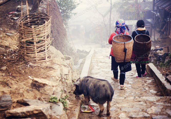 Vietnamese woman walking to Sapa.