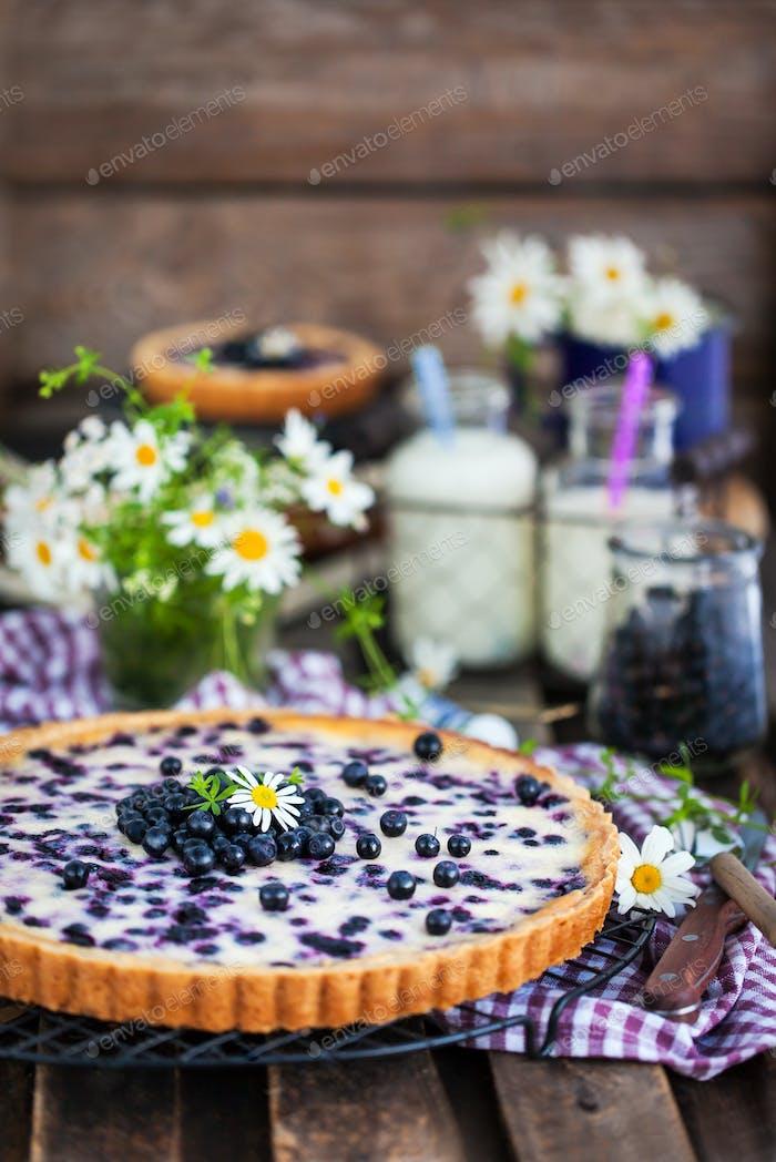 Fresh homemade creamy blueberry tart (open pie) on rustic backgr