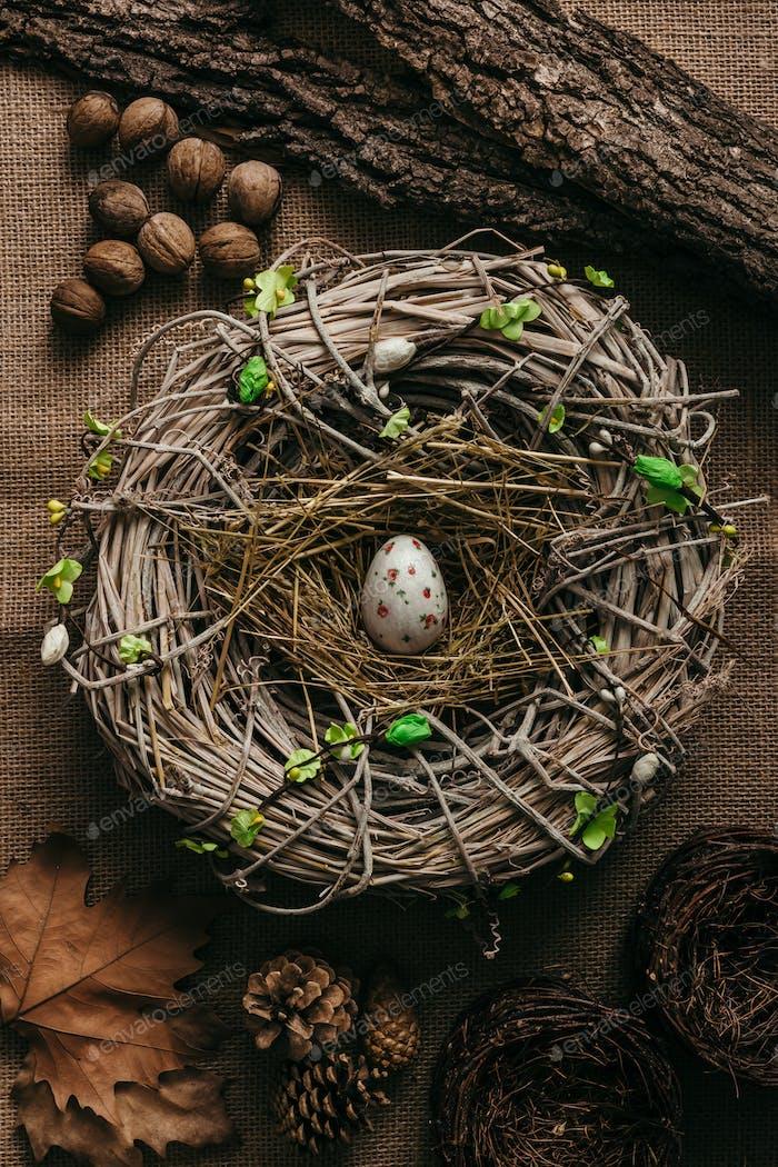 Easter egg in bird nest