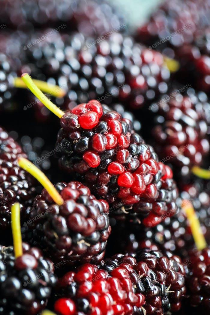 mulberry fruit closeup