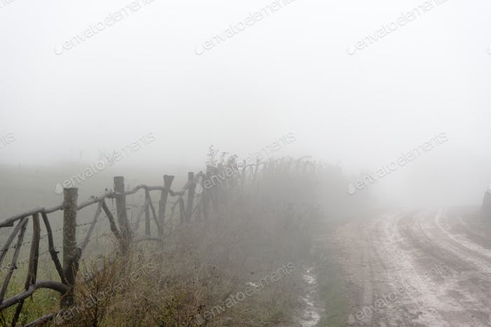 Uneven road, hedge, fog in the Armenian village closeup