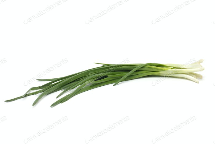 Eight ripe, beautiful spring onions on a white background.