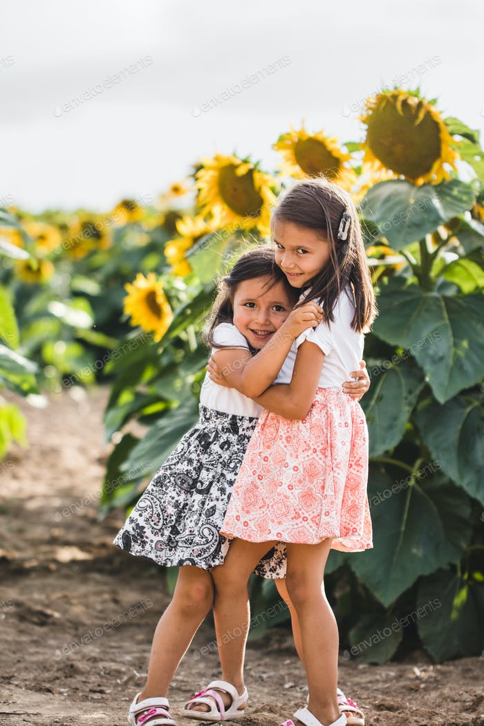 Little girls among of a sunflower among a field of sunflowers in the evening. Summer concept
