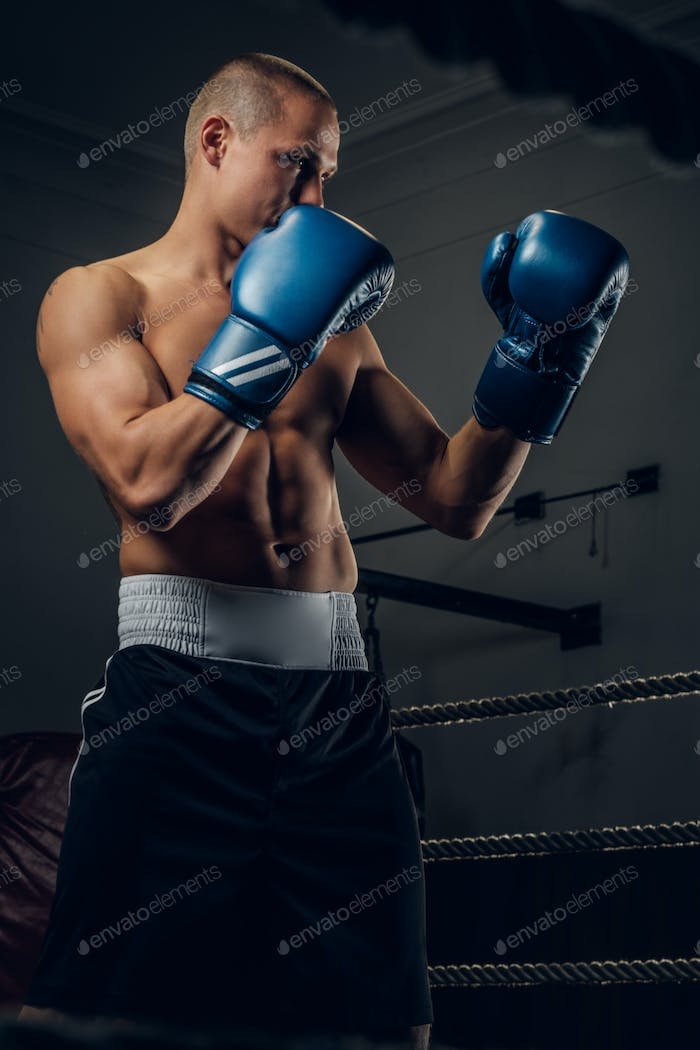 Portrait of young experienced boxer on the ring