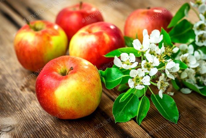 Raw organic apples
