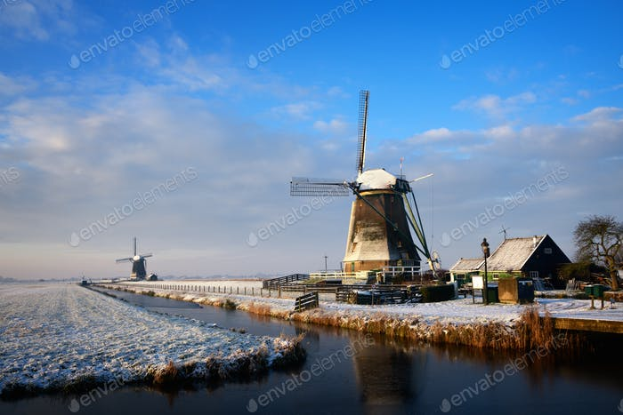 Windmills in the snow in a winter landscape at sunrise