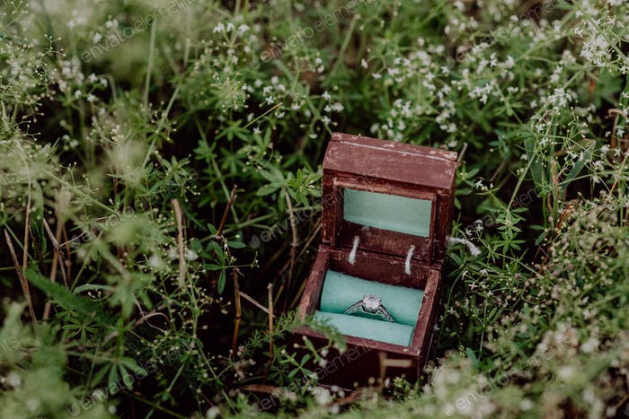 An engagement ring in a wooden box on grass.