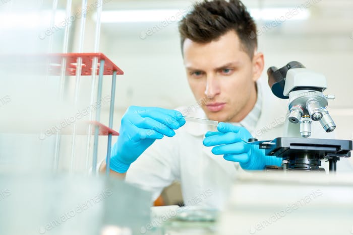 Concentrated Researcher Wrapped up in Work