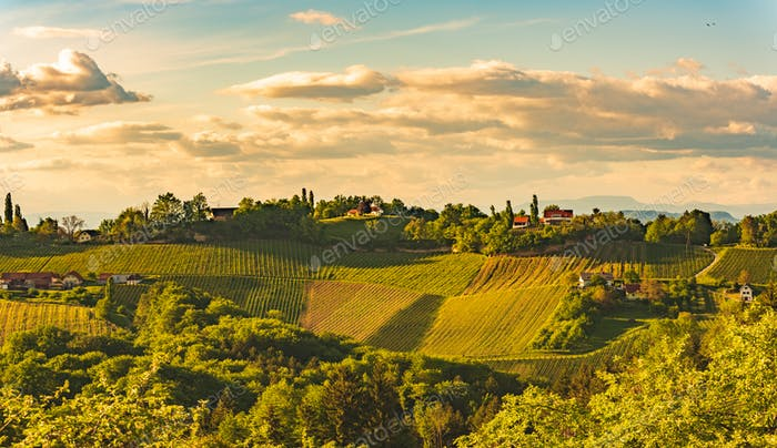 Sunset over South Styria vineyard landscape in Steiermark, Austria