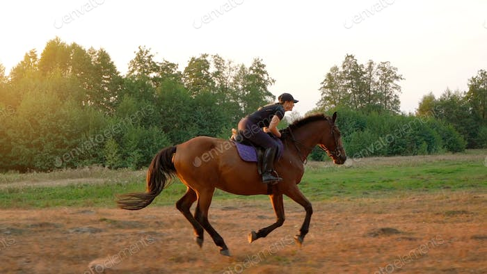 Woman riding horse by gallop through a meadow at sunset