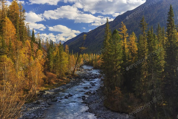Autumn landscape with mountains, river and yellow trees.