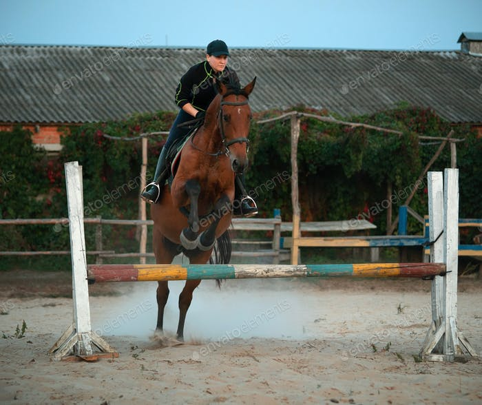 Horsewoman riding on brown horse and jumping the fence in sandy parkour riding arena