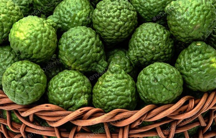 Zitrushystrix, Bergamotte Obst für Kräutermedizin