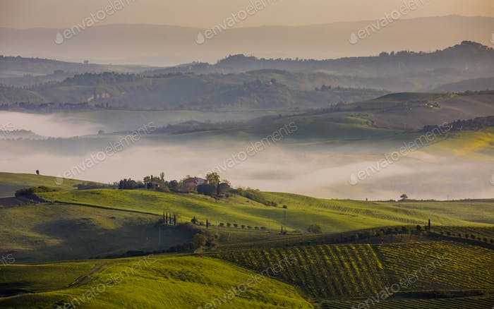 Hilly countryside Tuscany