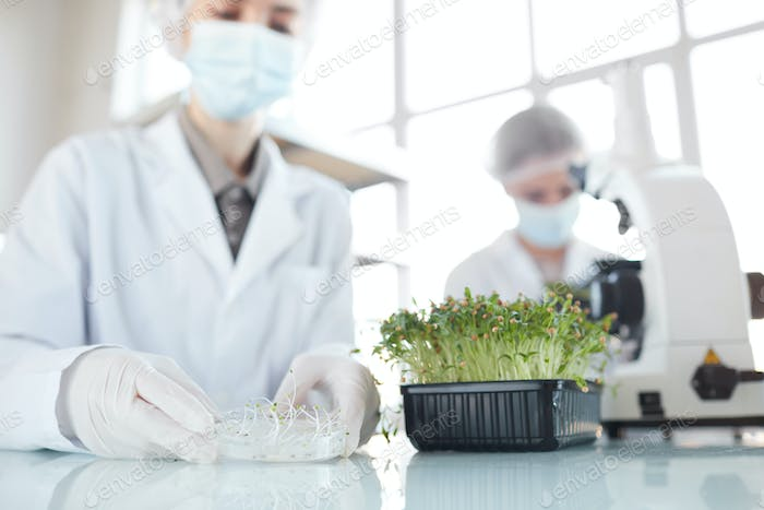 Scientists Working in Bio Laboratory Close Up