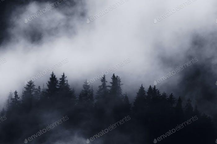 Silent dark mountain with mist