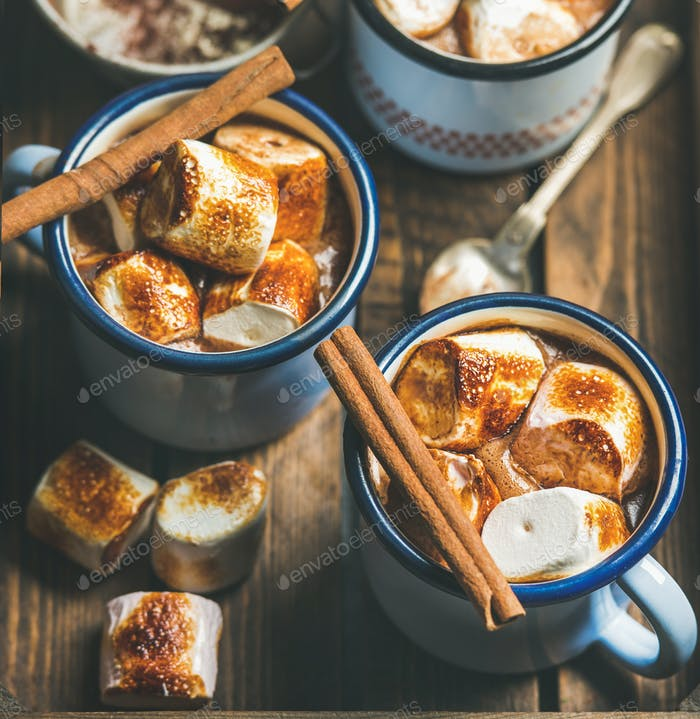 Hot chocolate with cinnamon and roasted marshmallows, square crop