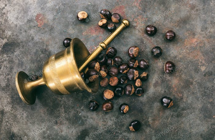 Guarana nuts and a bronze mortar on metal rusty background, top view