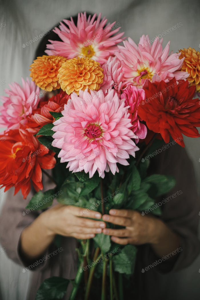 Woman holding autumn flowers bouquet in rustic room. Florist in linen dress with dahlias