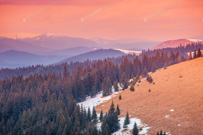 Carpathian mountains in winter time