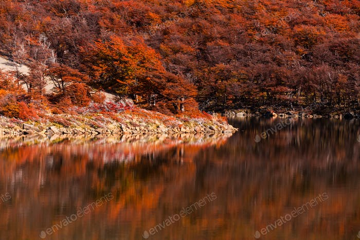 Beautiful lake and autumn forest in the mountains.