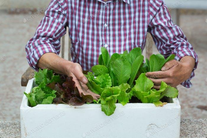 Gardening senior woman, activity stimulating mental health
