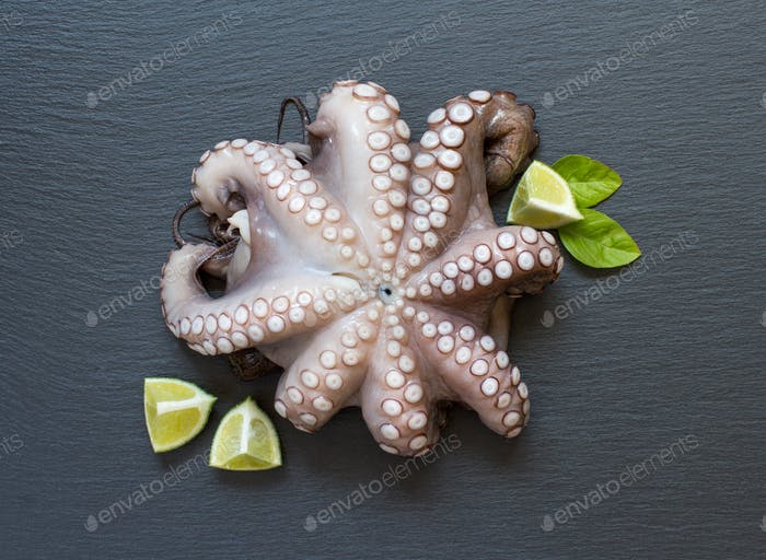 Thumbnail for Raw octopus with lime and basil