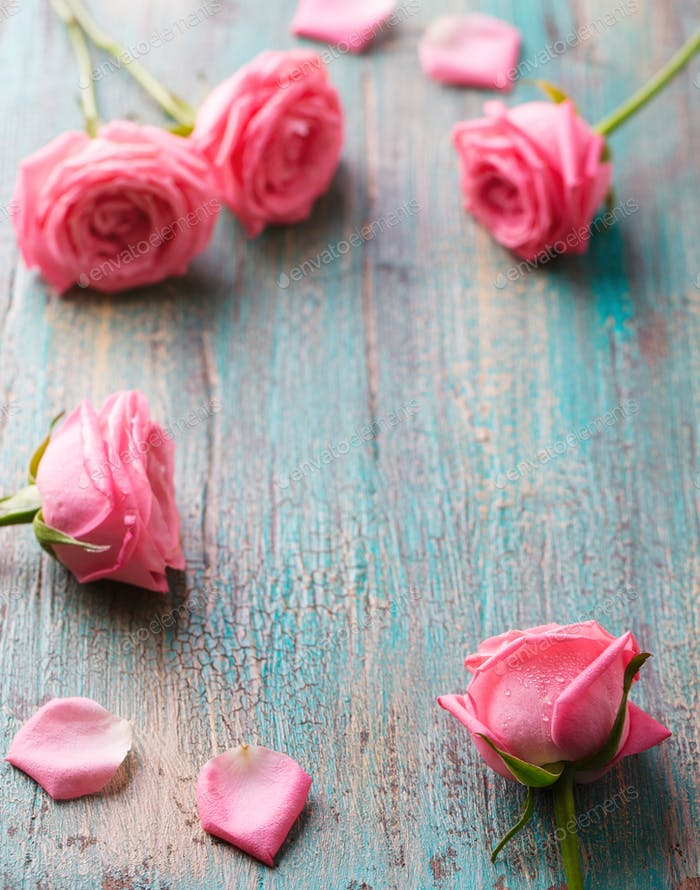 Roses Heads and Petals Frame on Turquoise Wooden Background. Copy Space.