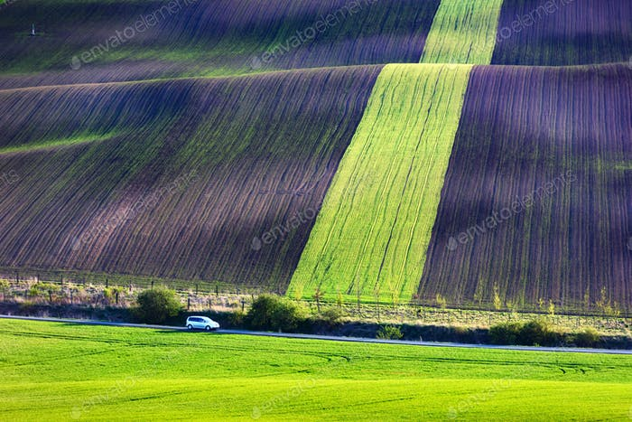 Moravian agricultural fields