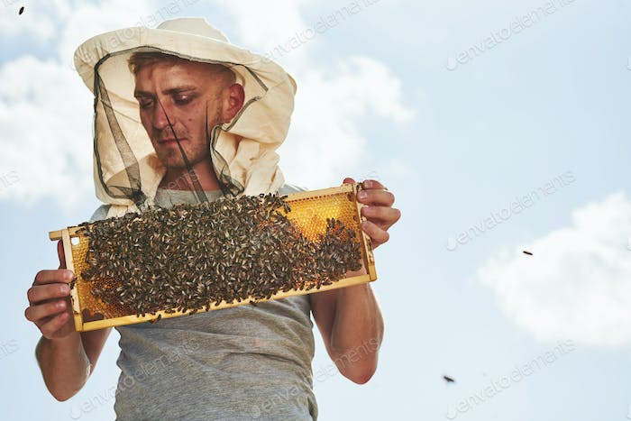 Warm weather. Almost clear sky. Beekeeper works with honeycomb full of bees outdoors at sunny day