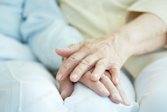 Union of seniors