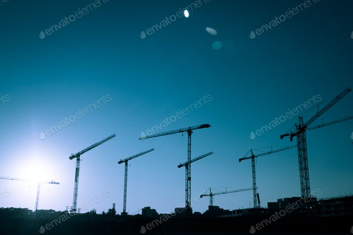 Crane Silhouette of a big Construction Site