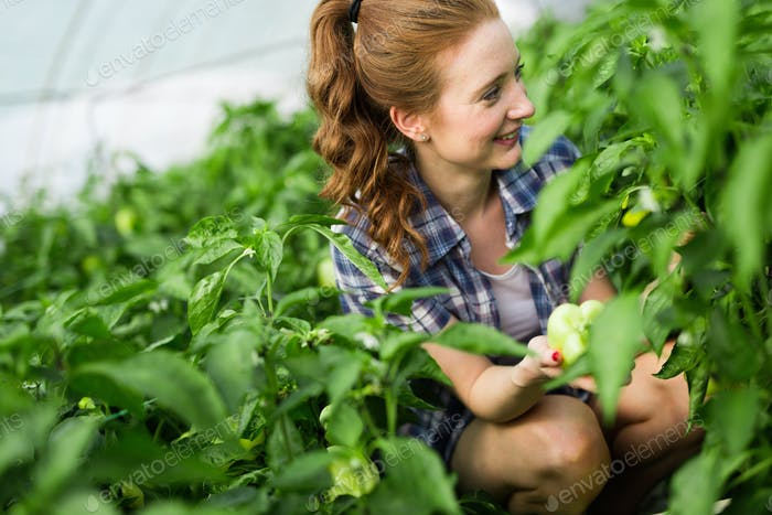 Attractive happy female farmer working in greenhouse