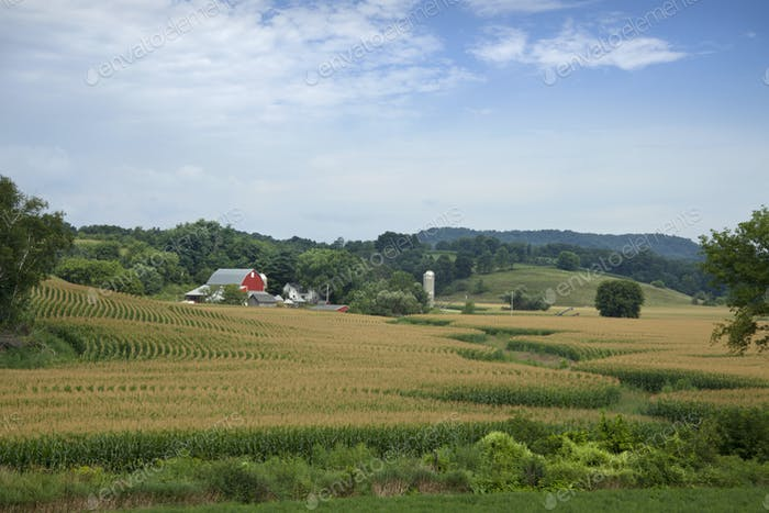 Wisconsin Farm with Red Barn and Cornfields
