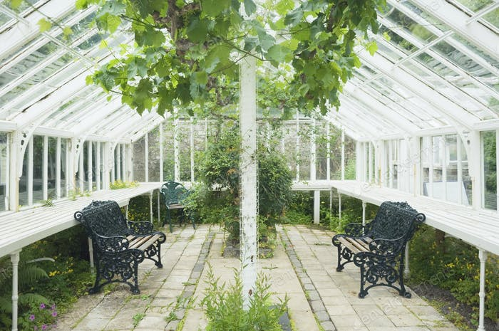 Elegant Greenhouse