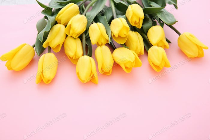Beautiful flower collection Stock Photo. close up, isolated on background. vertical with copy space.
