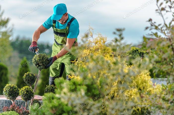 Gardener Maintenance Job
