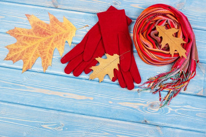 Autumnal leaves, womanly woolen gloves and shawl, clothing for autumn or winter